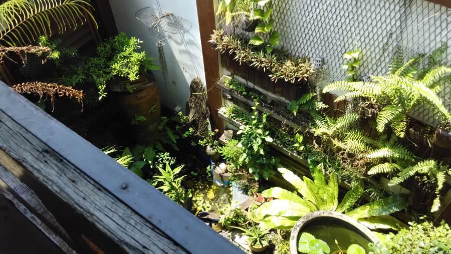garden-gopeng