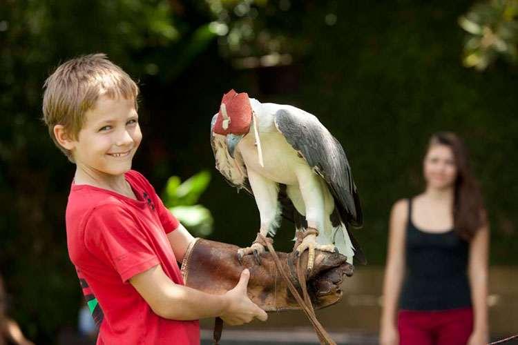 Taman Burung Bali - tempat menarik wajib Bali