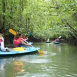 Kayak di Dev Adventure Tours