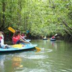 kayak adventure tours - tempat aktiviti lasak di pulau langkawi