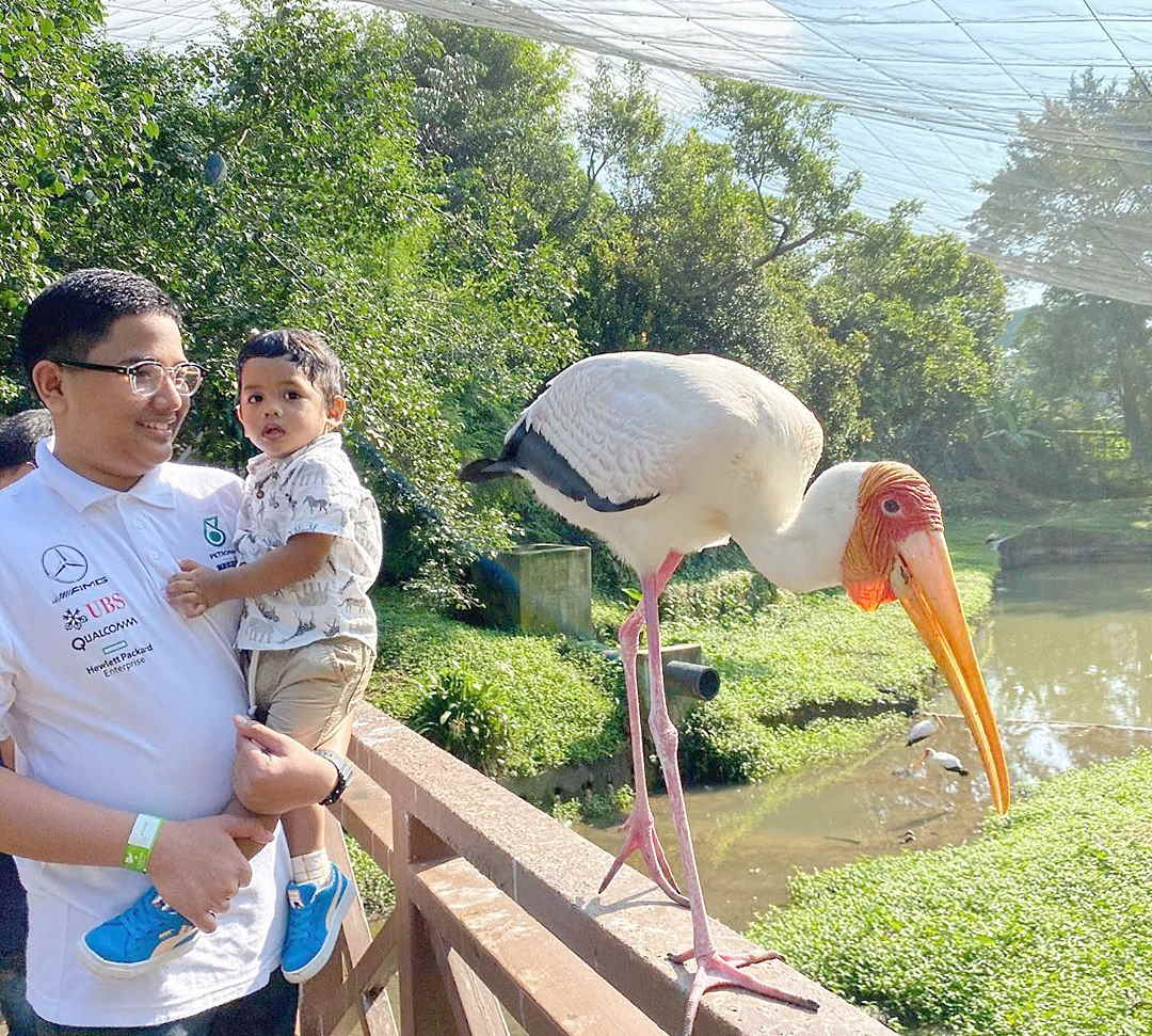 burung yang jinak di kl bird park