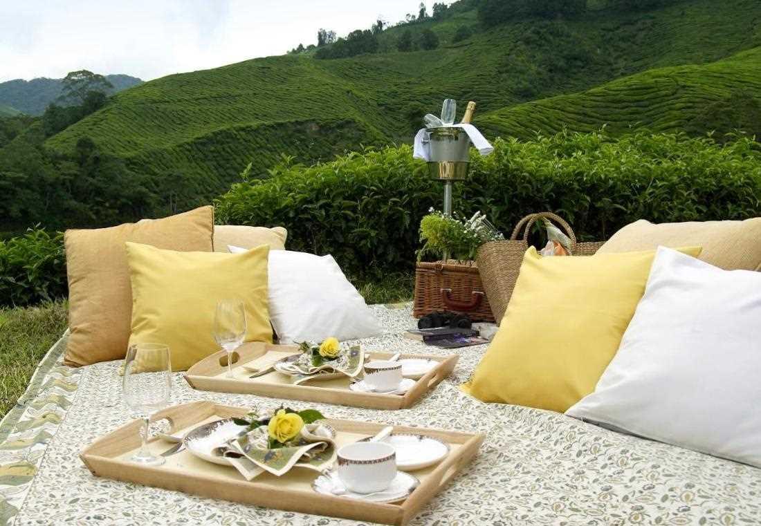 piknik di cameron hghland resorts