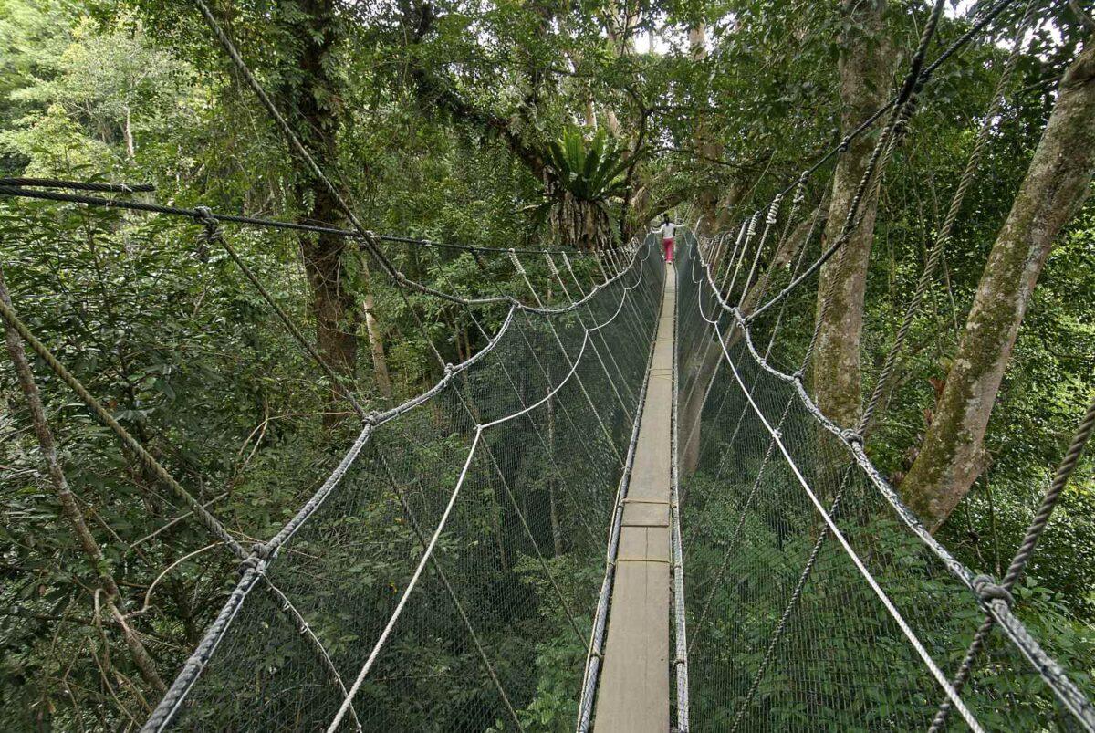 dua pelancong di jambatan tergantung poring