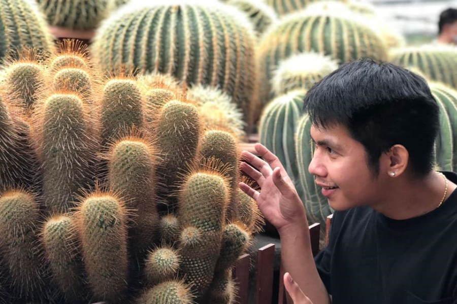 cactus point cameron highlands