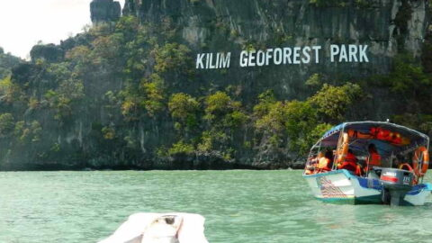 tour sungai kilim langkawi