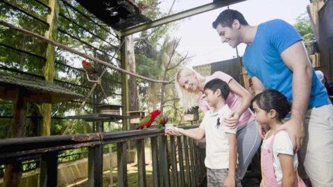 tiket kl bird park atau taman burung kuala lumpur