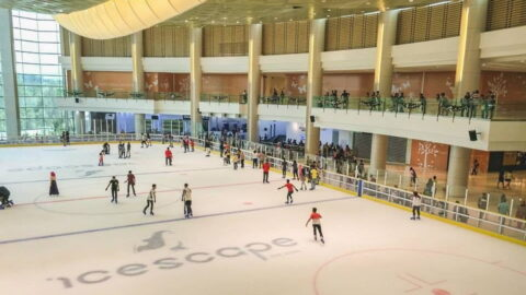 Putrajaya Icescape Ice Rink view