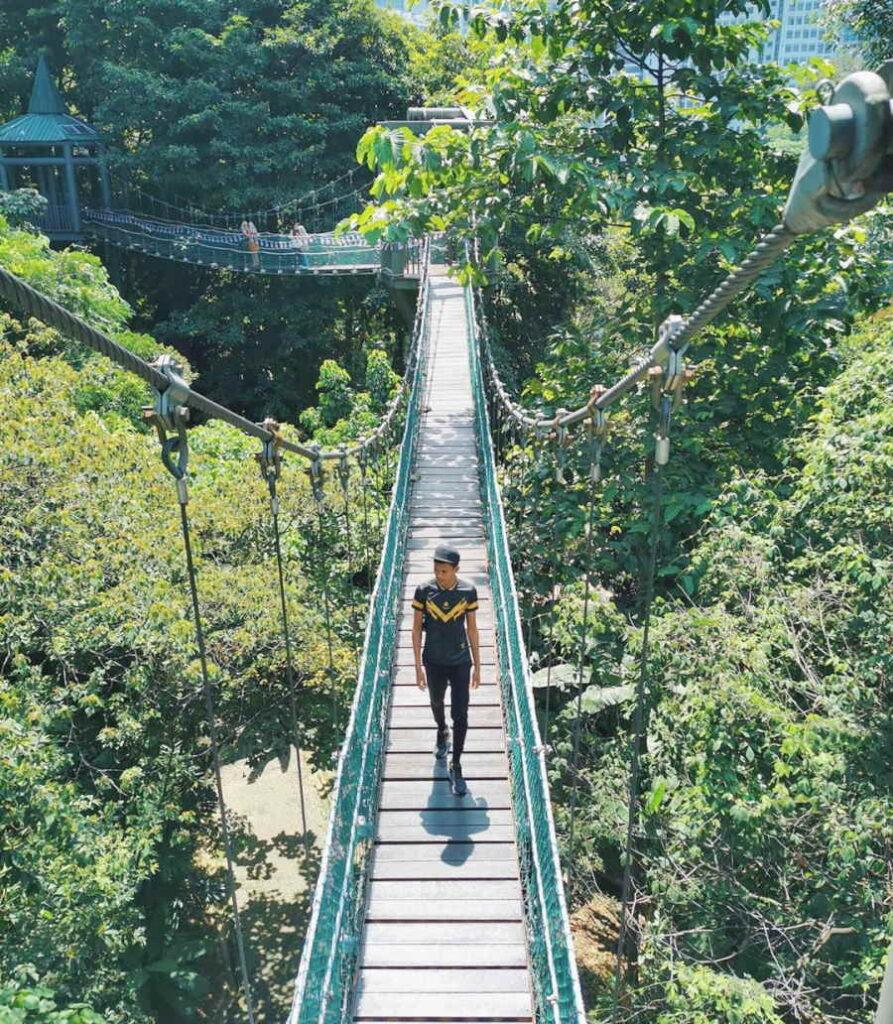 kl forest eco park di bukit nanas